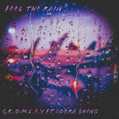 Feel The Rain Ft Cobra $hins