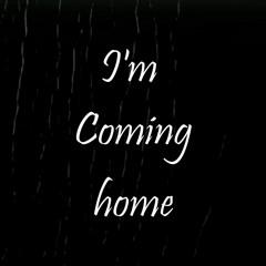 I'm Coming home - Skylar Grey (COVER)