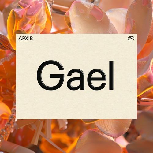 APXIB ㉔ GAEL