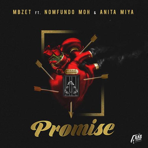 Promise (feat. Anita Miya & Nomfundo Moh)