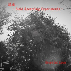 Field Recording Experiments -1 / 支笏湖 ( Lake Sikotsuko In Hokkaido )