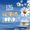 River Flowing and Space Music White Noise For Bedtime Sleep and Baby Sleep
