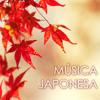 Música de Tambor