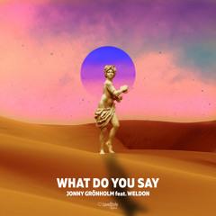 Jonny Grönholm feat. Weldon - What Do You Say