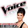 The House Of The Rising Sun (The Voice Performance)