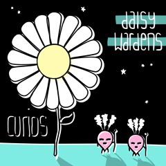 Daisy Wardens Album Preview