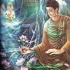 49 - Ẩn Mật Pháp Hoa Phần 1 - Thầy Thích Trí Quảng Thuyết Giảng