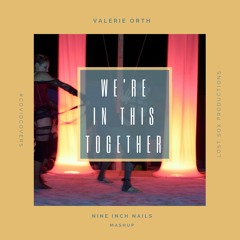 We're in This Together [Nine Inch Nails Mashup]