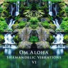 Download Shamandelic Vibrations V1 (2020 New Earth Vision) blended by Om Aloha Mp3