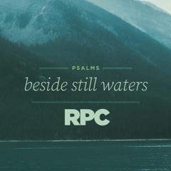 """""""Be Still"""" // Psalm 46"""