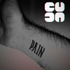 CUDA - PVIN