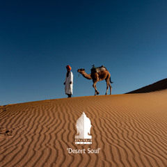 Ethnic House Mix 'Desert Soul' by SILKROAD Beats (Arash Salehi)