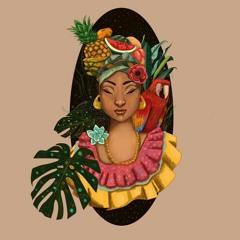 Summer night. Dj Flamingo (afro latin house mix)