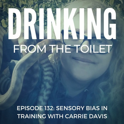 #132: Sensory Bias in Training with Carrie Davis