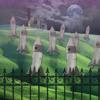 Download Sparkle (William Steffey) Mp3