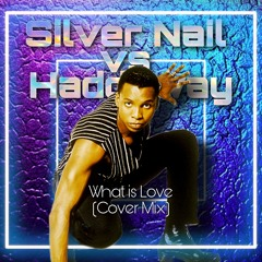 Silver Nail vs. Haddaway - What Is Love (Cover mix)