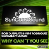 Why Can't You See (Club Mix) [feat. Danny Ulman] (Club Mix)