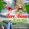 Download Tere Bina Bhi Kya Jeena Mp3