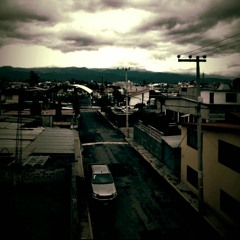 Fondo y Neblina // MrX