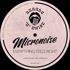 📣 MICRONOISE - Everything Feels Right [BNT050] 11th June 2021