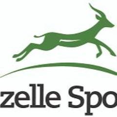 Gazelle Sports on WWJ-AM with Brooke Allen