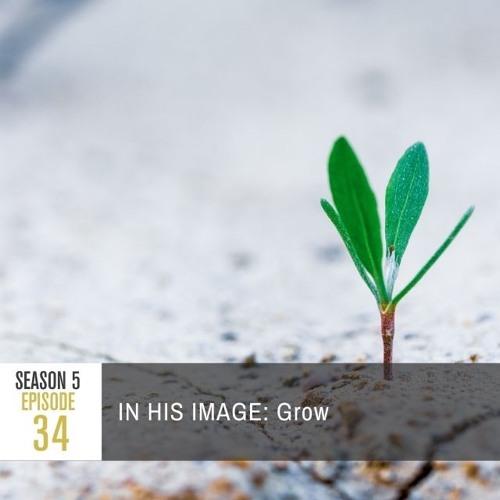 Season 5 Episode 34 - IN HIS IMAGE: Grow