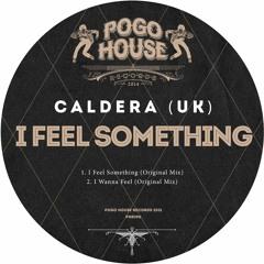 CALDERA (UK) - I Feel Something (Original Mix) PHR296 ll POGO HOUSE