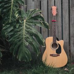 Leisurely Guitar