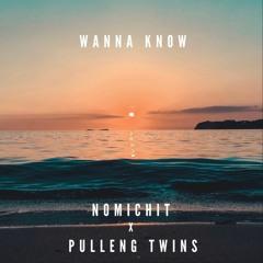 Wanna Know - Nomichit X ThePullengTwins