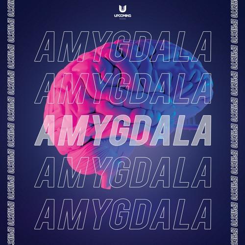 Ephesto - Amygdala Image