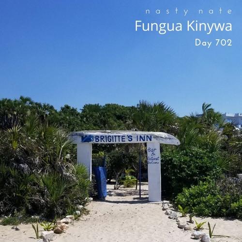n a s t y  n a t e - Fungua Kinywa. Day 702 - SOULFUL HOUSE