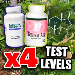 QUADRUPLING Of Natural Testosterone Levels Using These Supplements Ft. Andrew Huberman