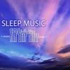 REM Sleep Phase