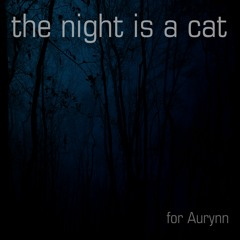 The Night Is A Cat