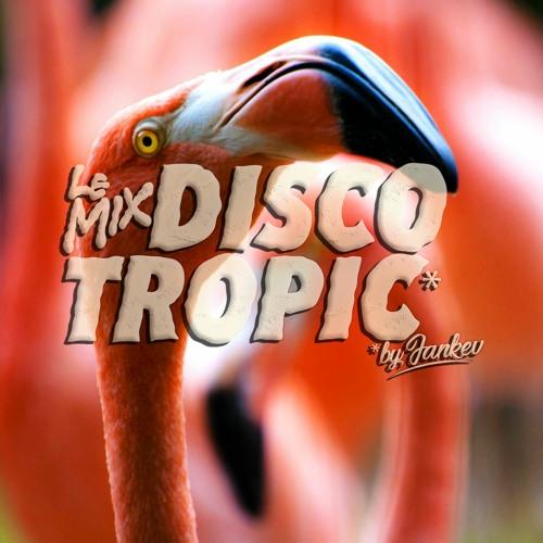 Discotropic Mix By Jankev #39 -- SummR Mixtape