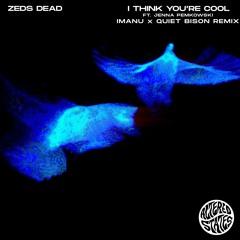 i think you're cool ft. Jenna Pemkowski (IMANU & QUIET BISON Remix)
