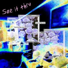 see it thru (recycleBin)