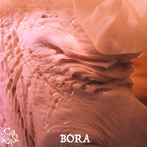 ♥ 26 ~ BORA ~ A WIND WHISPERS