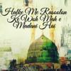 Download Halke Me Rasoolon Ke Woh Mah e Madani Hai |Salman Arshad Mp3