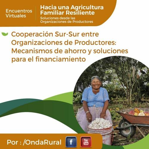 Webinar 2: «Cooperación Sur-Sur entre Organizaciones de Productores/as...