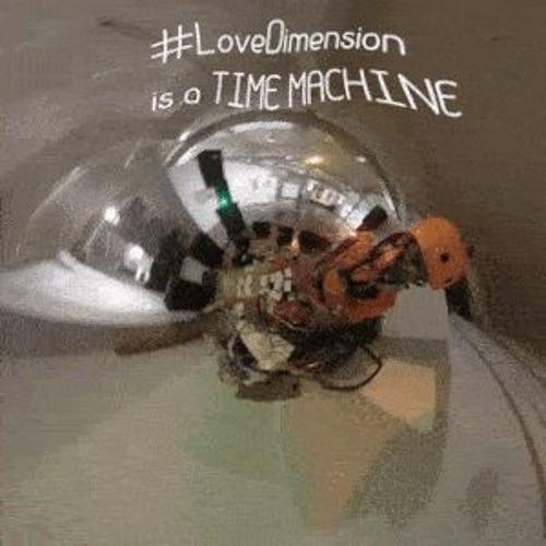 Door To The LoveDimension