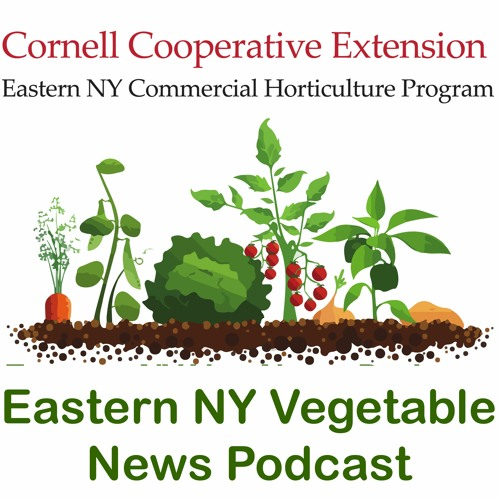 COVID-19 Impact on Farm Businesses in New York