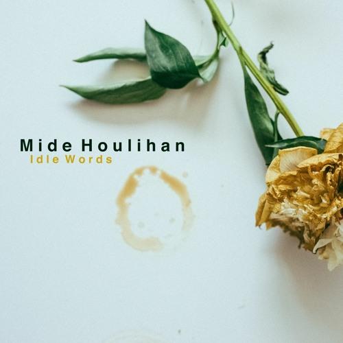 Mide Houlihan - Idle Words