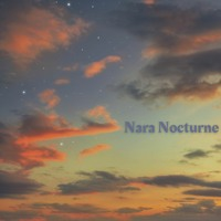 Nara Nocturne