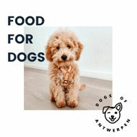 #02 Mindblowing (dog) food for thought