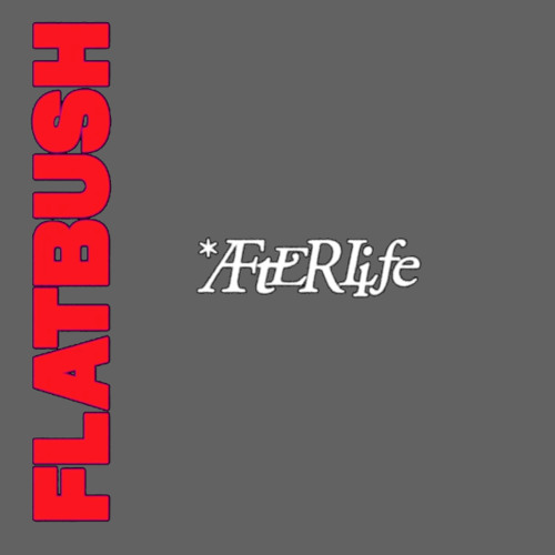 Flatbush Zombies - Afterlife (WORM_HD Dirge)
