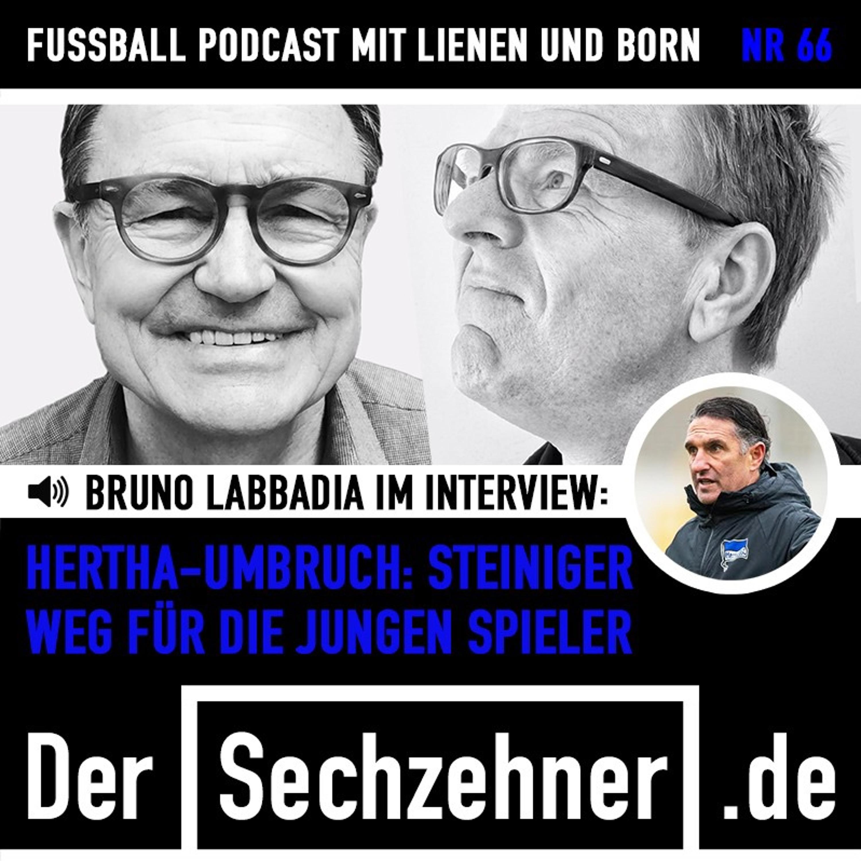 Schalke-Chaos, Moukoko-Trubel und Labbadia im Gespräch: Der Sechzehner No. 66