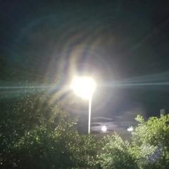 the moon is still rising