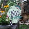 Download Milde Möhre 2020 | Wundertüte | Spanice Showcase Mp3