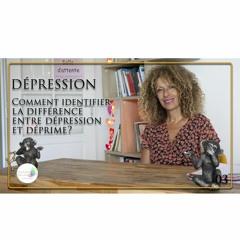 03 Dépression - Comment identifier la différence entre dépression et déprime?